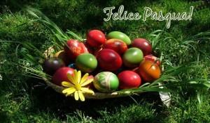 Il Bambino Naturale ti augura Buona Pasqua!