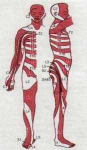 recettori dolore parto doloroso