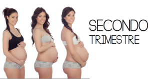 Secondo trimestre di gravidanza: cosa accade e cosa fare