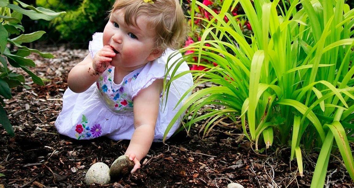 Per preservare la flora intestinale dei bambini, fateli sporcare e mangiare sano!