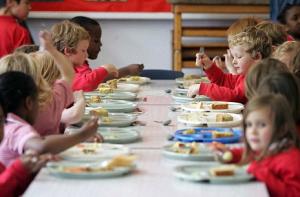 Menu vegano alla mensa scolastica: vittoria!!