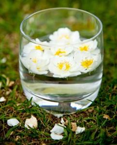 fiori-di-bach-bicchiere-acqua
