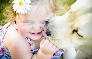 Amare gli animali, amare l'umanità
