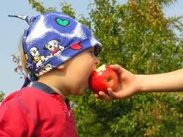 bambino ecologico mangia mela