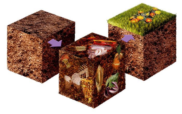 Raccolta differenziata, compostare i rifiuti animali