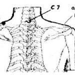 punto collo digitopressione gravidanza