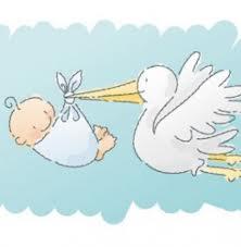 fiocco azzurro cicogna bambino