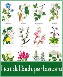 fioridibachbambini