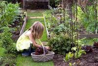 bambina nell'orto per alimentazione sana e sport