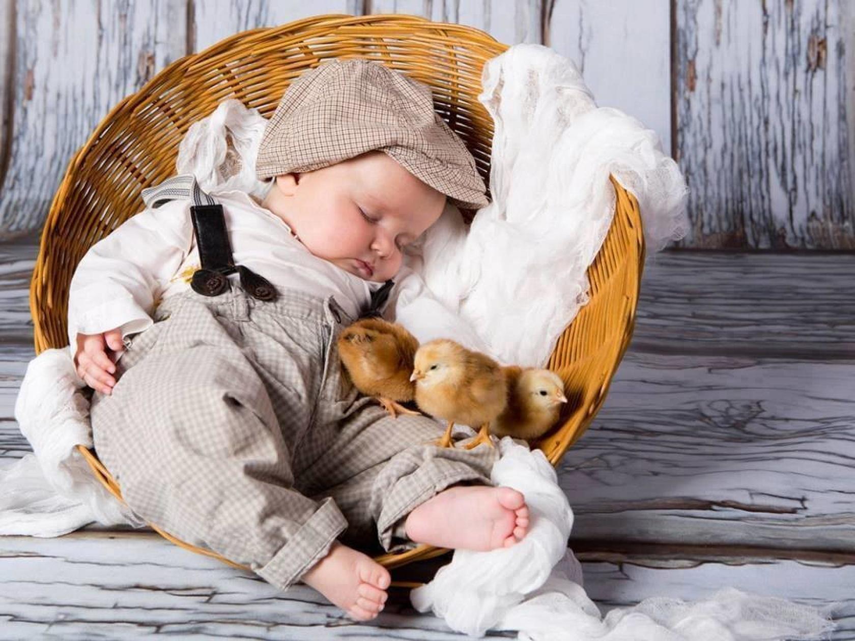 Pediatri consigliano: bimbi alla larga da criceti, tartarughe e pulcini